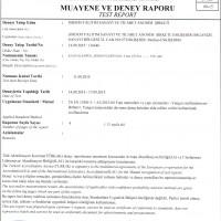 Flexifoam Yangına Karşı Tepki Sınıflandırma Raporu